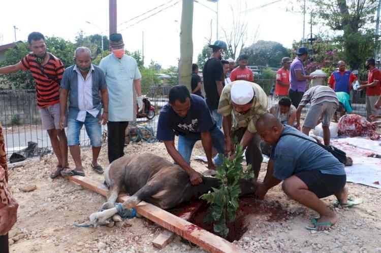 Hari Raya Idul Adha 1441 H, Polda NTT Distribusikan 2000 paket daging kurban ke Panti Asuhan
