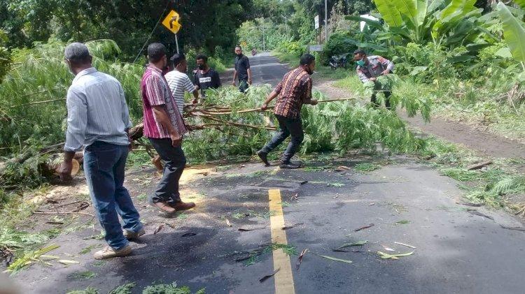 Personil Polsek Waigete bersama warga Gotong Royong Bersihkan Pohon Tumbang