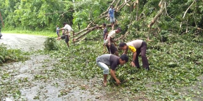 Brigpol Tawaf Bersama Warga Desa Bersihkan Pohon Tumbang yang Menutup Jalan Trans Sumba
